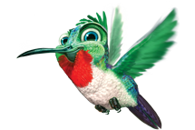 sky hummingbird Announcing Adult VBS Program